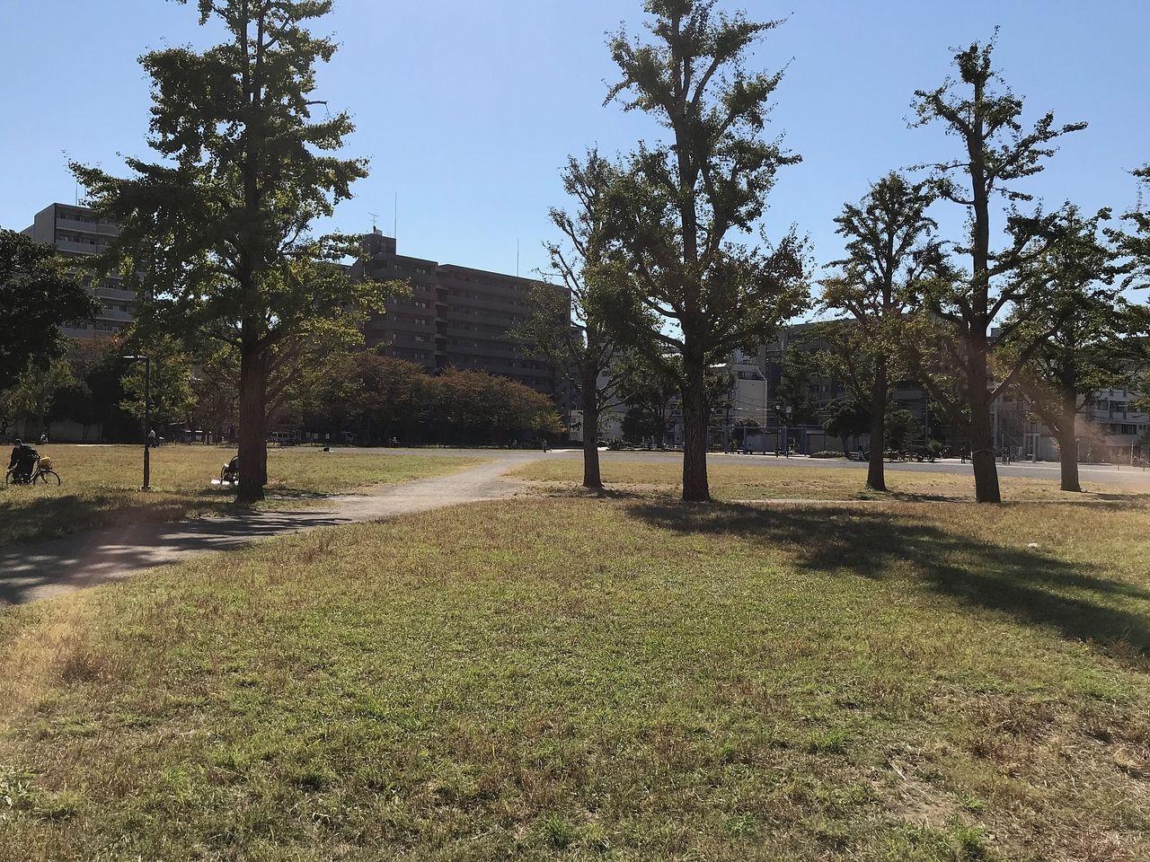 ピクニックもできる芝生広場